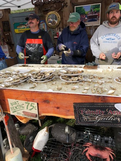 Wellfleet Oyster Fest